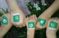 Main Bhi Pakistan Hoon Tu Bhi Pakistan Hai