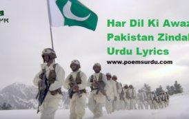 Har Dil Ki Awaz Pakistan Zindabad (Urdu Lyrics and Video)